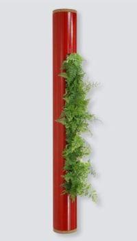 Naturaleza vertical con cuadros de plantas vivas friki girl - Cuadro jardin vertical ...